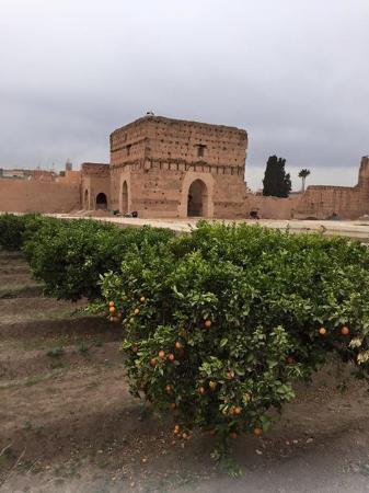 Riad Assalam: Palais Badhi