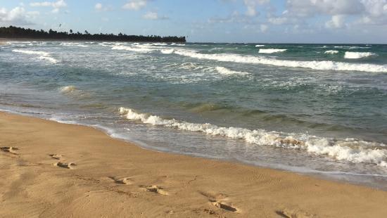 Beach - Excellence Punta Cana Photo