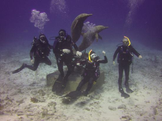 Caimán Brac: Lynn's Reef, Cayman Brac