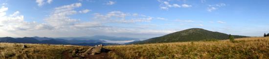 Roan Mountain, TN: Roan in August is a great experience