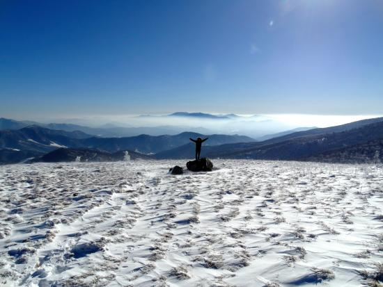 Roan Mountain, TN: Round Bald for Valentine's Day