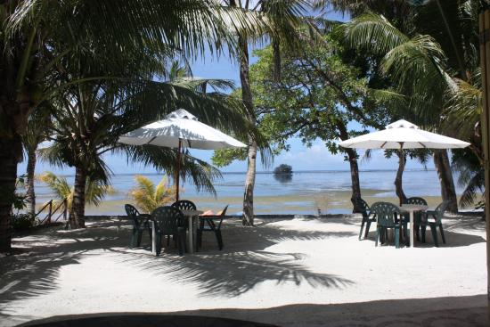Dolphin Bay Resort & Peleliu Divers : View from hotel