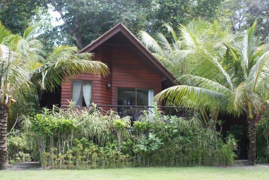 Dolphin Bay Resort & Peleliu Divers : Cottage