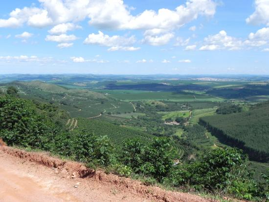 Parque Estadual da Serra da Boa Esperanca: Cafezal na subida da serra
