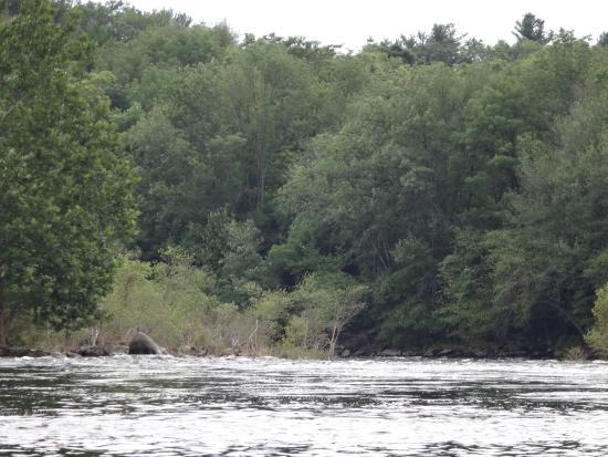 Nesquehoning, PA: Lehigh River
