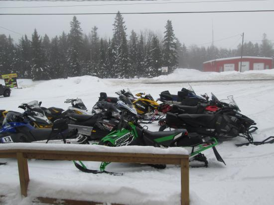 Temagami, แคนาดา: Holy sleds!
