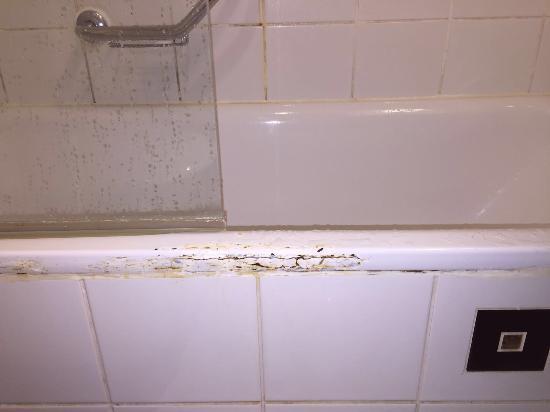 Hotel Prima Tel-Aviv: El hotel no parece de 4 estrellas, en mi habitación había humedad en varios lugares! La ducha er