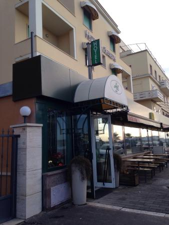 a cosy hotel across from the ocean picture of hotel la scaletta rh tripadvisor co za