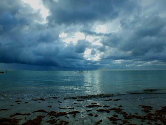 Blog do Riquetti: Chuva e saudade