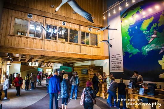 Denali Visitor Center: Vistor Center