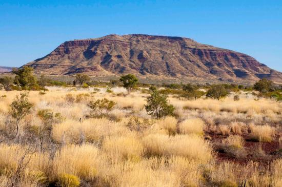 Karijini National Park, Australie : The impressive Mount Bruce surrounded by spinifex