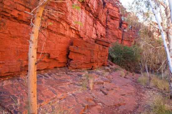 Karijini National Park, ออสเตรเลีย: Deep red ochre