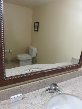 Hilton Garden Inn Washington DC / Greenbelt: Suite's 1/2 bath.