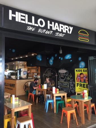 Hello Harry Caloundra