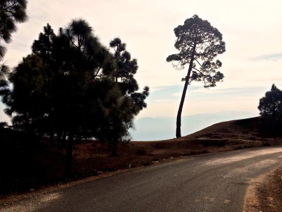Landscape - Itmenaan Estate Photo