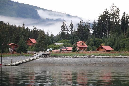 Tutka Bay Lodge Photo