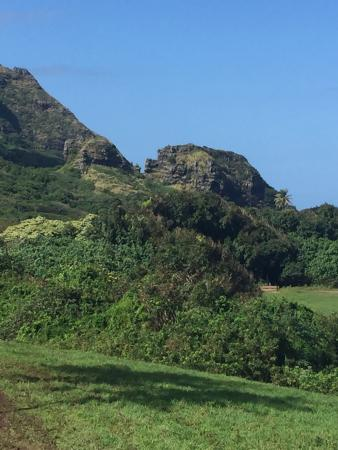 Kaneohe, HI: photo5.jpg