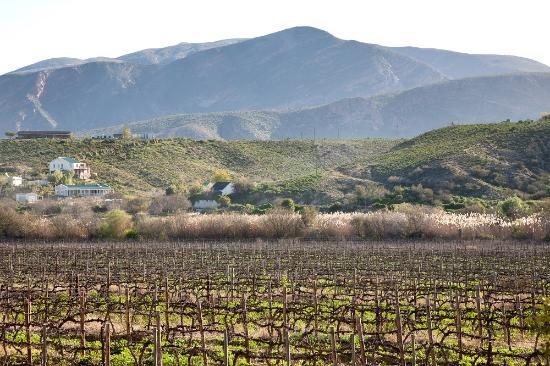 Calitzdorp, جنوب أفريقيا: Annex View