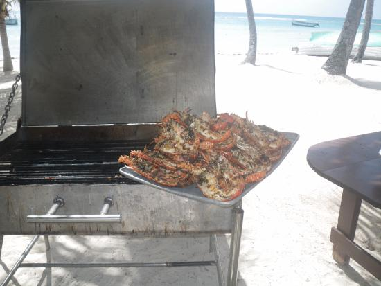 Bayahíbe, República Dominicana: Langoustes Barbecue