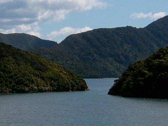 Picton, Nueva Zelanda: queen charlotte,s sound