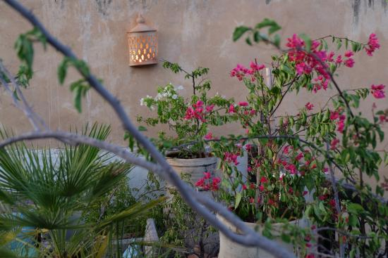 Riad Lune et Soleil: Roof-Top Terasse