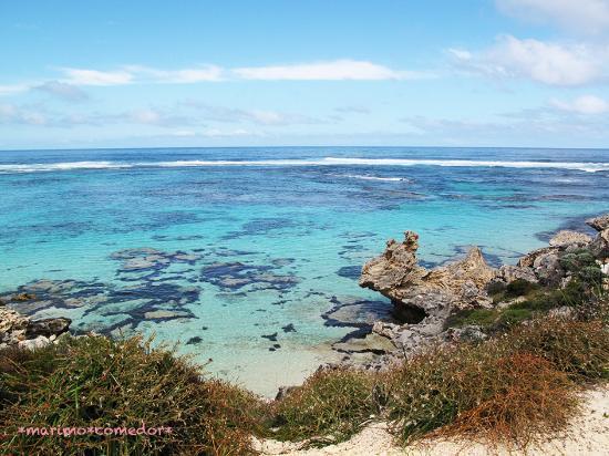 Rottnest Island, Australia: 自転車で一周中、高台みたビーチ。インド洋の青。