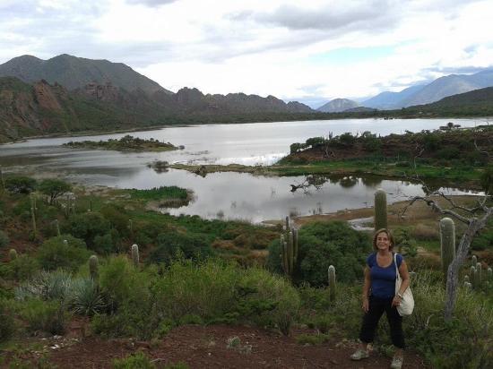 Laguna del Brealito