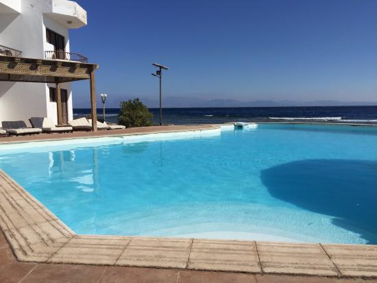 Dyarna Hotel: Pool with view across Red Sea to Saudi