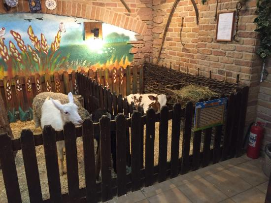 Trogatelny Zoopark