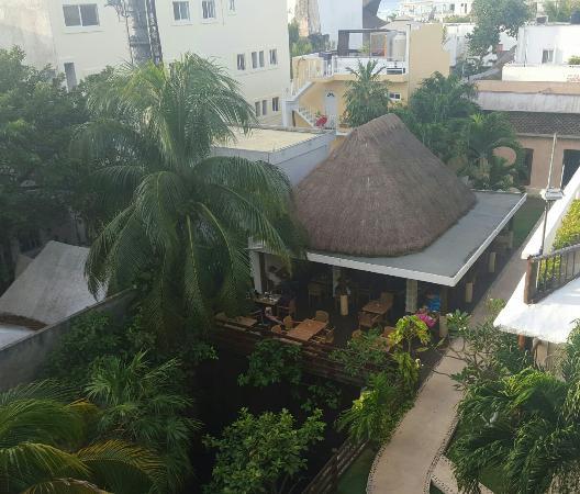 Hotel Posada Sian Ka'an: 20160209_081321-1_large.jpg