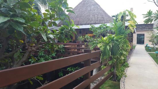Hotel Posada Sian Ka'an: 20160208_074741_large.jpg