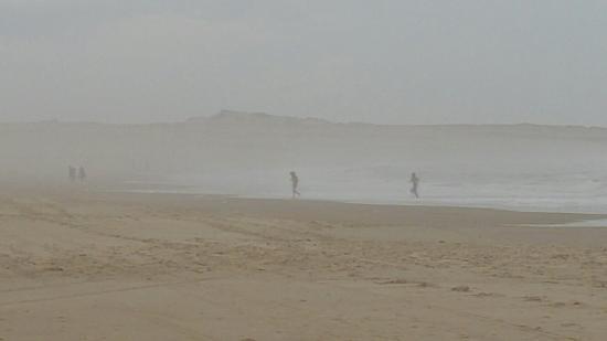 Cabo Polonio, Urugwaj: 20160208_142210_large.jpg