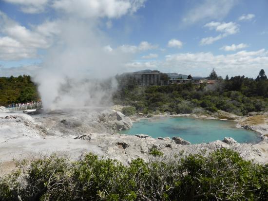 Copthorne Hotel Rotorua: Te Puia Thermal reserve