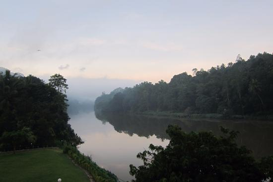 Cinnamon Citadel Kandy: Early morning river view from the pool