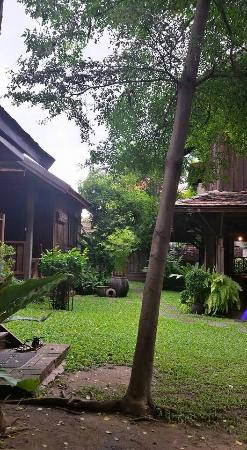Tanita House: Jardin