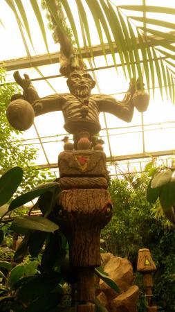 The Jungle: Jungle pic 10