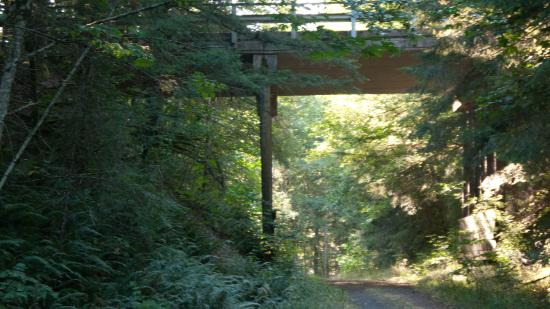 Scappoose, OR: Crown Zellerbach Trail.