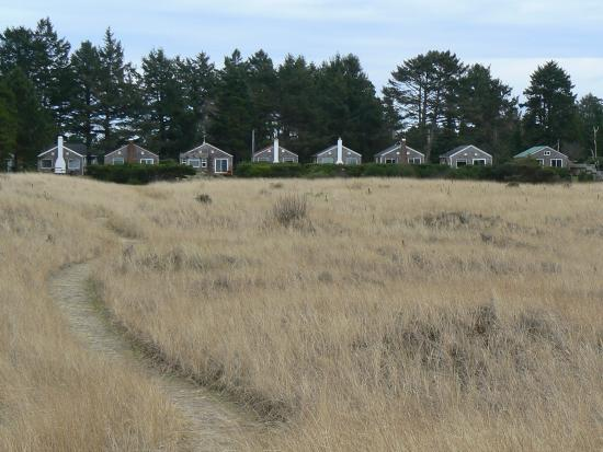 Klipsan Beach Cottages: Looking from the dunes east toward the cabins.