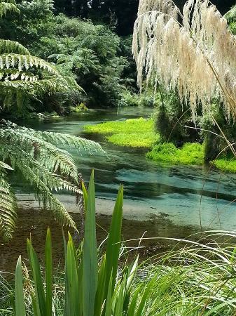 Hamurana, Nueva Zelanda: je blijft foto's maken