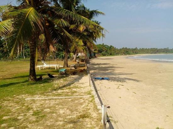 Kadolana Beach Resort : If you want time alone, then this is the most gorgeous place to be!