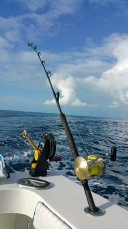Capt. Willy Guided Fishing Adventure