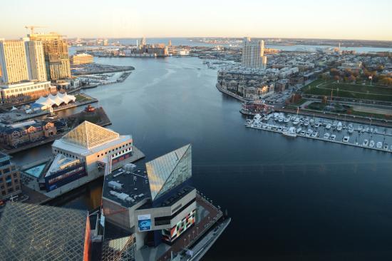 vista inner harbor picture of top of the world observation level rh tripadvisor com