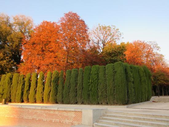 Retiro-Park: outono