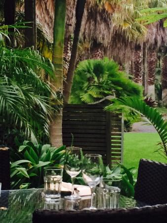 Kerikeri, Νέα Ζηλανδία: Beautiful alfresco setting in gorgeous gardens