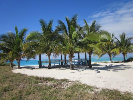Bimini: My favorite, Shell Beach - quick golf cart away.