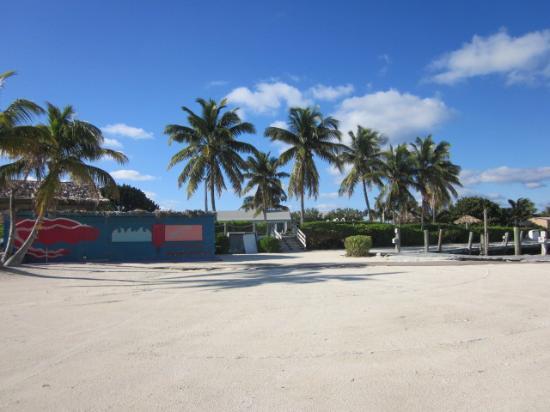 Bimini: Beach club - mostly to ourselves to enjoy!