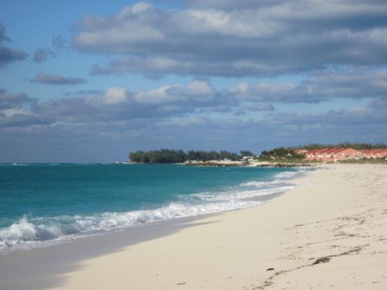 Bimini: Remote island offers you solitude!