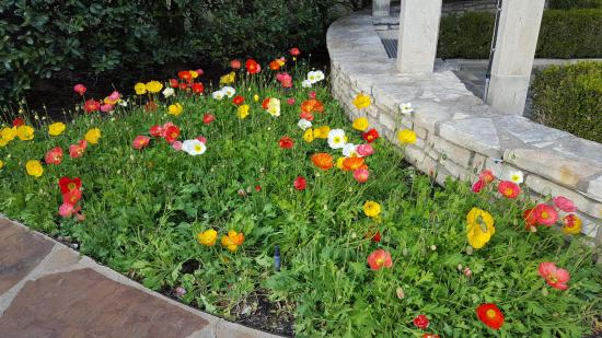 Fort Worth Botanic Garden Map