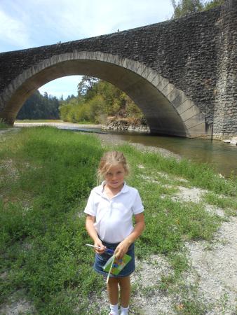 Garberville, Californie : River by Benbow Inn, very low during drought
