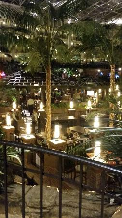 gaylord opryland resort convention center valentines day weekend nwtf show